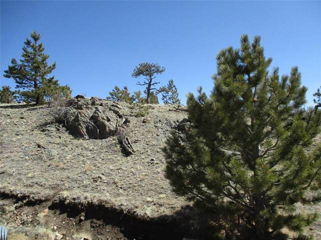 2042 Goldenburg Canyon Road, Hartsel, CO 80449 (MLS #S1024608) :: Colorado Real Estate Summit County, LLC