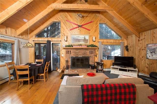 840 Peterson Drive, Alma, CO 80420 (MLS #S1024637) :: Dwell Summit Real Estate