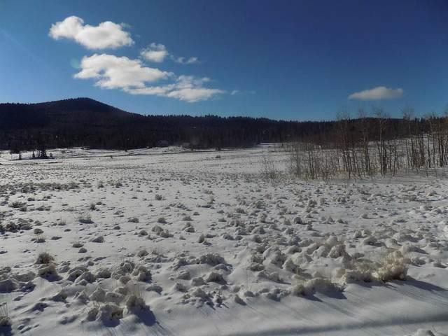 172 Puma Lane, Como, CO 80432 (MLS #S1024804) :: Colorado Real Estate Summit County, LLC