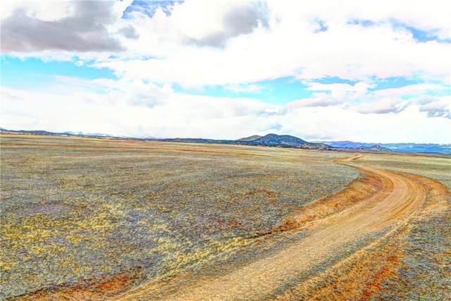 3179 Rhyolite Drive, Hartsel, CO 80449 (MLS #S1024828) :: Colorado Real Estate Summit County, LLC