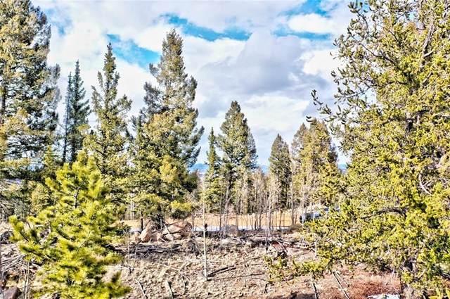 316 Chippewa Lane, Como, CO 80432 (MLS #S1024842) :: Colorado Real Estate Summit County, LLC