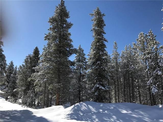 334 Baby Doe Drive, Leadville, CO 80461 (MLS #S1024868) :: Dwell Summit Real Estate