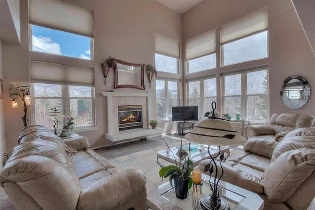 602 Willowbrook Road, Silverthorne, CO 80498 (MLS #S1024897) :: eXp Realty LLC - Resort eXperts