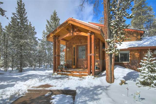 248 Placer Drive, Alma, CO 80420 (MLS #S1024900) :: Colorado Real Estate Summit County, LLC