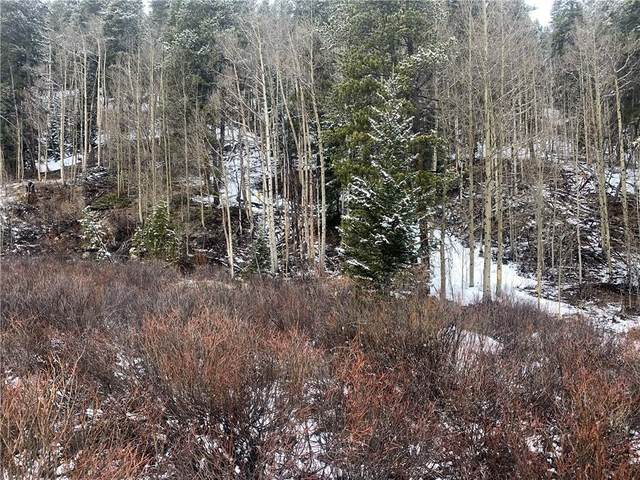 6285 State Hwy 9, Breckenridge, CO 80424 (MLS #S1025972) :: Colorado Real Estate Summit County, LLC