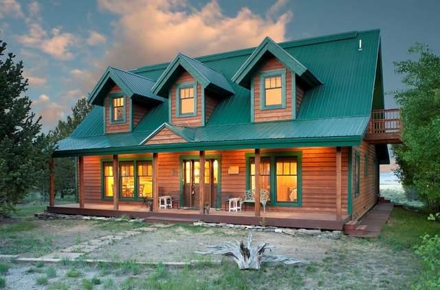 2189 Bluestem Way, Fairplay, CO 80440 (MLS #S1025991) :: Dwell Summit Real Estate