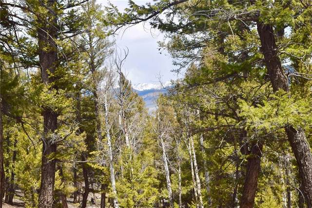 TBD Middle Fork Vista, Fairplay, CO 80440 (MLS #S1026018) :: Dwell Summit Real Estate