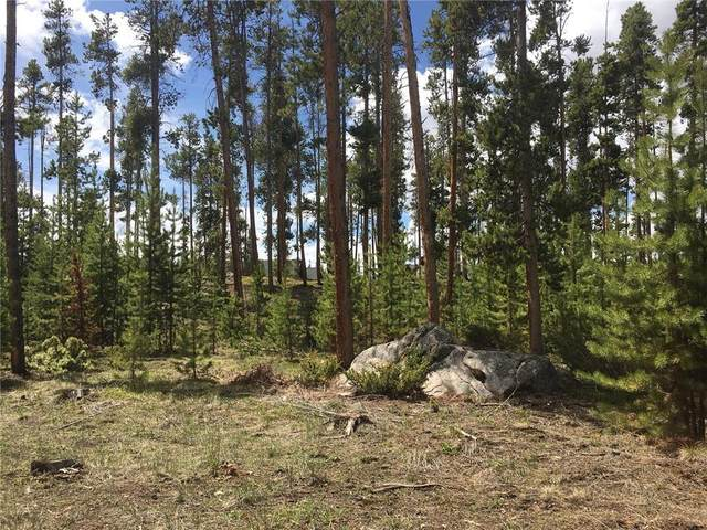 266 Gcr 662, Grand Lake, CO 80447 (MLS #S1026220) :: Dwell Summit Real Estate