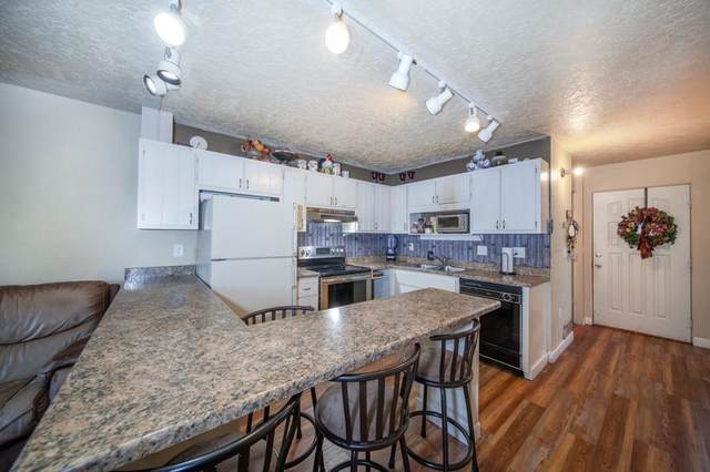 490 Straight Creek Drive #509, Dillon, CO 80435 (MLS #S1026262) :: Colorado Real Estate Summit County, LLC