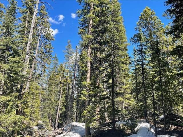 322 Puma Place, Fairplay, CO 80440 (MLS #S1027329) :: Colorado Real Estate Summit County, LLC