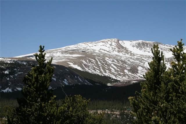 tbd Bobcat Lane, Fairplay, CO 80440 (MLS #S1027374) :: Colorado Real Estate Summit County, LLC