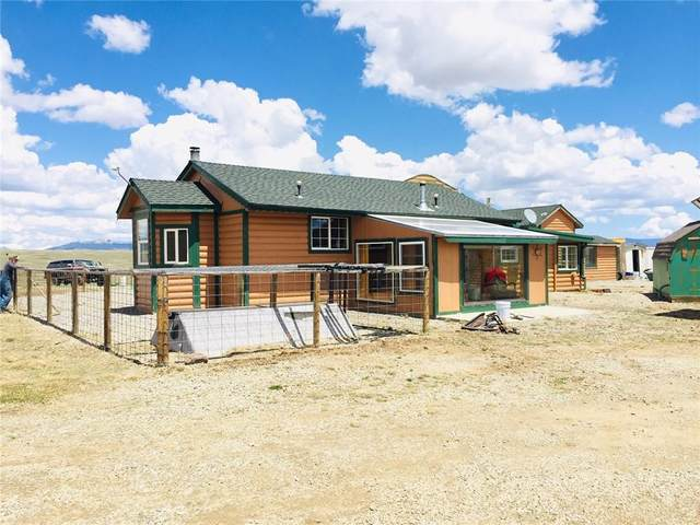 641 S Park Drive, Fairplay, CO 80432 (MLS #S1027386) :: eXp Realty LLC - Resort eXperts
