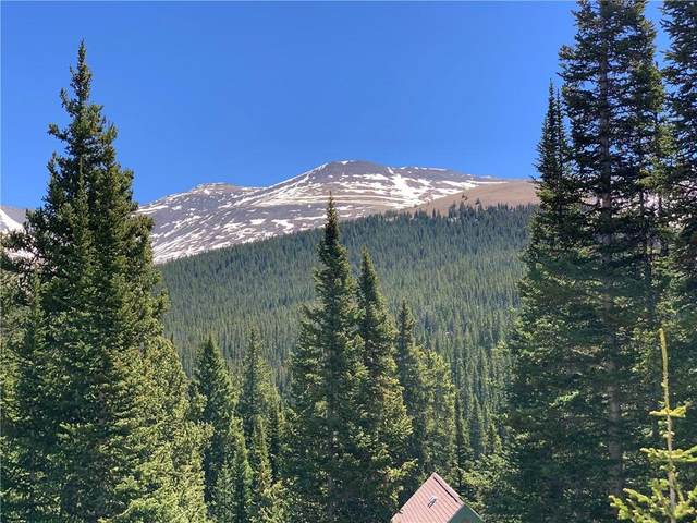 0089 Cr 670, Breckenridge, CO 80424 (MLS #S1027439) :: Clare Day with LIV Sotheby's International Realty