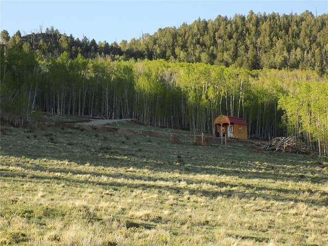 833 Mexican Ridge Circle, Como, CO 80432 (MLS #S1027455) :: Colorado Real Estate Summit County, LLC