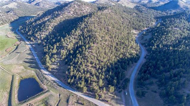 TBD Co Road 102, GUFFEY, CO 80820 (MLS #S1027461) :: Clare Day with Keller Williams Advantage Realty LLC