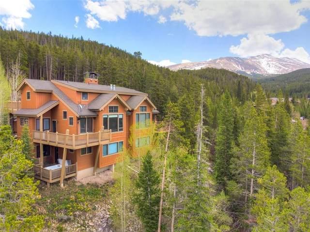 2582 Boreas Pass Road C, Breckenridge, CO 80424 (MLS #S1027498) :: Colorado Real Estate Summit County, LLC