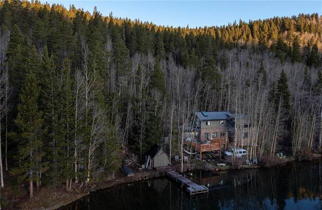 2071 County Road 58 L4, GRANT, CO 80448 (MLS #S1027503) :: Dwell Summit Real Estate
