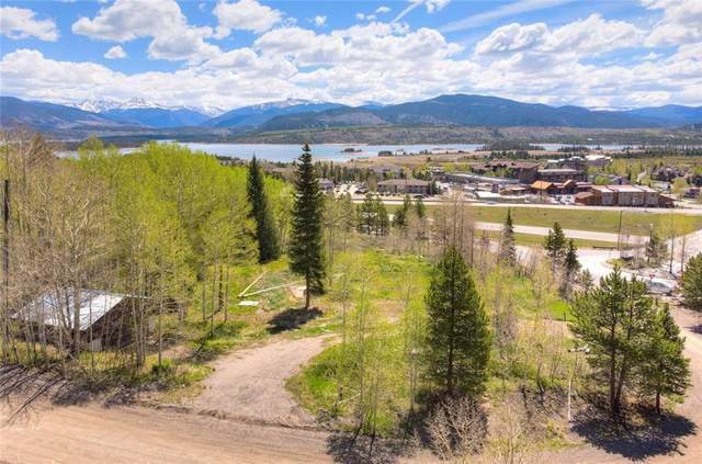 33 Giberson Road, Frisco, CO 80498 (MLS #S1027510) :: eXp Realty LLC - Resort eXperts