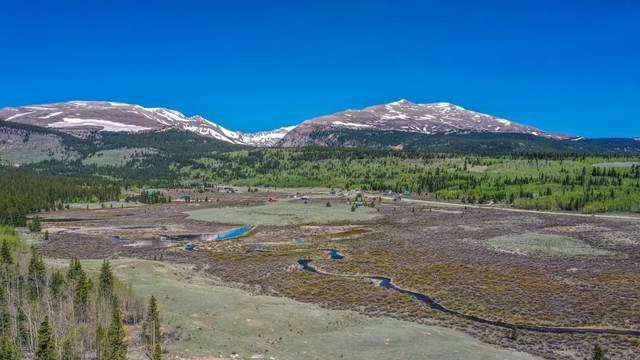 385 High River Court, Alma, CO 80420 (MLS #S1027531) :: eXp Realty LLC - Resort eXperts