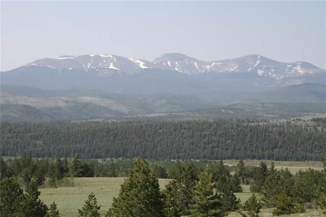 4949 Co Road 5, Fairplay, CO 80440 (MLS #S1027622) :: Dwell Summit Real Estate