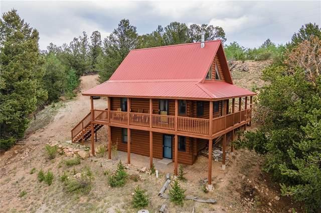 96 Bufflehead Circle, Como, CO 80432 (MLS #S1027748) :: Colorado Real Estate Summit County, LLC