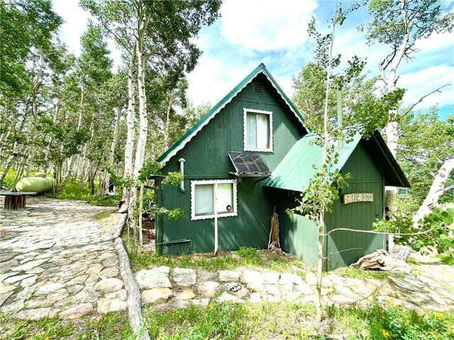 383 Aspen Way, Fairplay, CO 80440 (MLS #S1028800) :: Colorado Real Estate Summit County, LLC