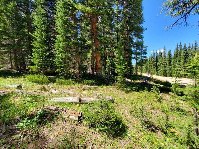 171 Bum Drive, Fairplay, CO 80440 (MLS #S1028819) :: Clare Day with Keller Williams Advantage Realty LLC