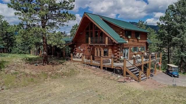 451 Spring Valley, Bailey, CO 80421 (MLS #S1028832) :: Colorado Real Estate Summit County, LLC