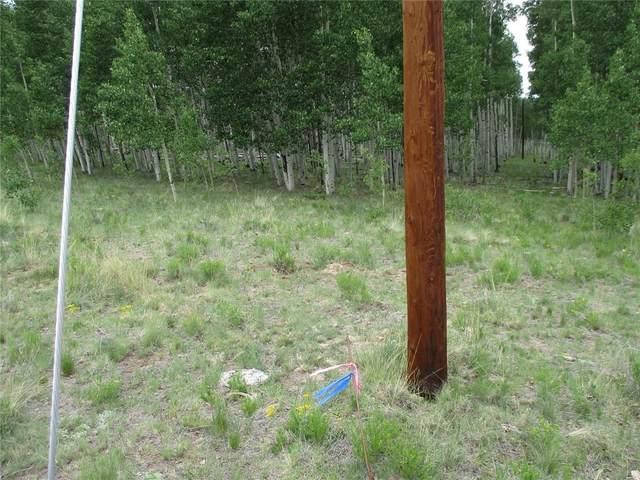 904 Night Hawk Circle, Como, CO 80432 (MLS #S1028948) :: Colorado Real Estate Summit County, LLC