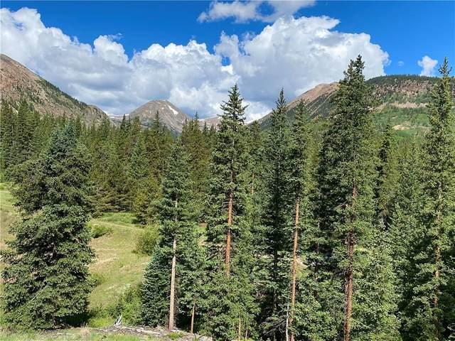 1141 Co Road 698, Alma, CO 80420 (MLS #S1028972) :: eXp Realty LLC - Resort eXperts
