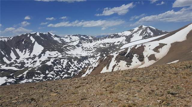 N/A Ms#5387 King William Lode, Alma, CO 80420 (MLS #S1028999) :: Colorado Real Estate Summit County, LLC