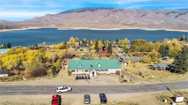 7101 Heeney Road, Heeney, CO 80498 (MLS #S1029155) :: Colorado Real Estate Summit County, LLC