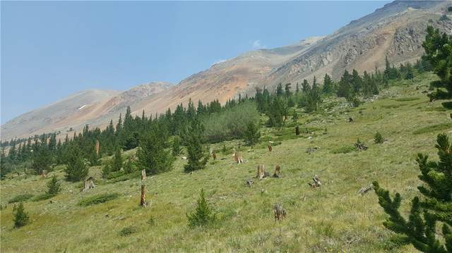 N/A Ms#19173 Samson -50%, Alma, CO 80420 (MLS #S1029198) :: Colorado Real Estate Summit County, LLC