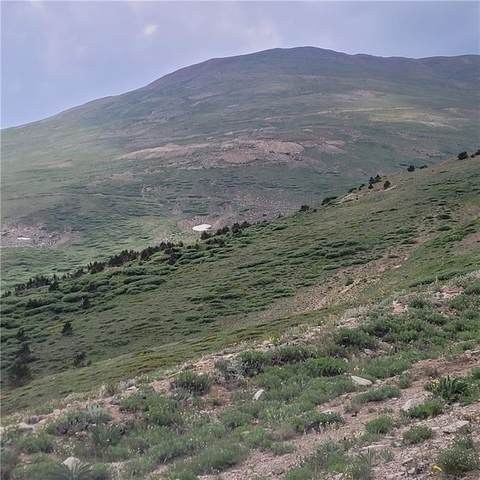 N/A Ms#17664 (3) Contiguous Mining Claims, Alma, CO 80420 (MLS #S1029199) :: Colorado Real Estate Summit County, LLC