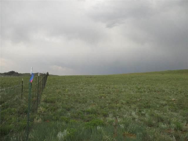 00 Antero Trail, Hartsel, CO 80449 (MLS #S1029242) :: Colorado Real Estate Summit County, LLC