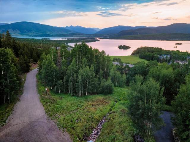 394 Giberson Road, Frisco, CO 80443 (MLS #S1029298) :: Colorado Real Estate Summit County, LLC