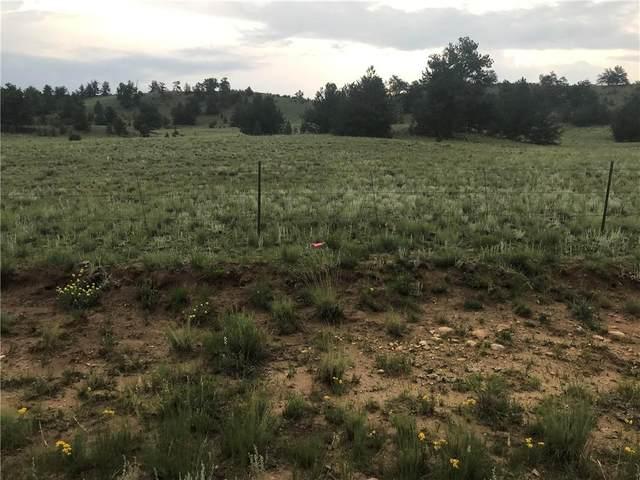 230 Vaquero Way, Como, CO 80432 (MLS #S1029381) :: Colorado Real Estate Summit County, LLC