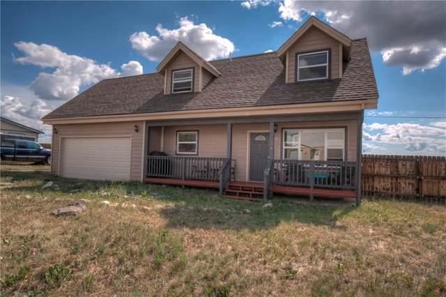 801 Crawford Lane, Fairplay, CO 80440 (MLS #S1029387) :: Colorado Real Estate Summit County, LLC