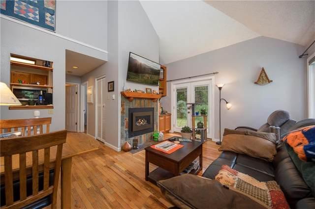 1842 Peregrine Lane D, Silverthorne, CO 80498 (MLS #S1029398) :: eXp Realty LLC - Resort eXperts