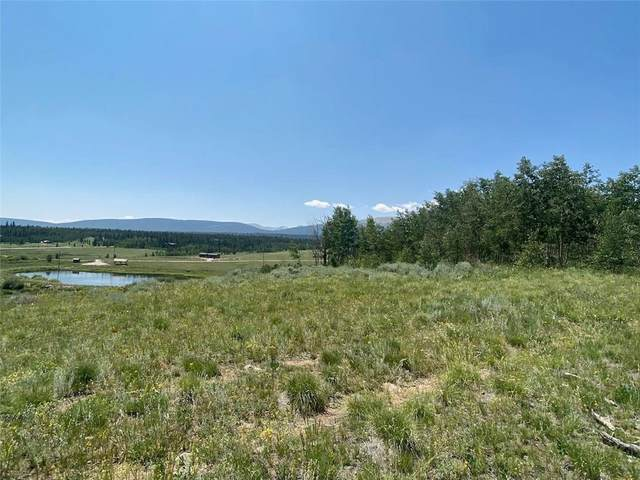 248 Foxtail Court, Fairplay, CO 80440 (MLS #S1029404) :: eXp Realty LLC - Resort eXperts