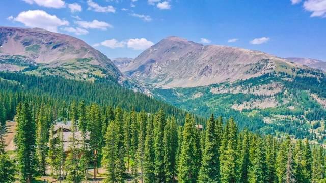 453 Camron Lane, Breckenridge, CO 80424 (MLS #S1030534) :: Colorado Real Estate Summit County, LLC