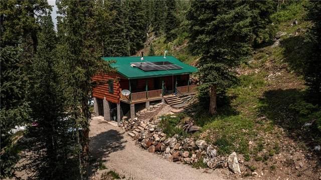483 Bullion Mine Road, Montezuma, CO 80435 (MLS #S1030541) :: eXp Realty LLC - Resort eXperts