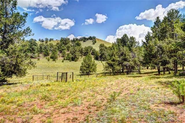 329 Vista Grande Court, Como, CO 80432 (MLS #S1030616) :: Colorado Real Estate Summit County, LLC