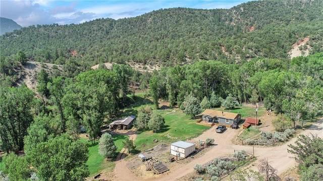130 County Road 111, Kremmling, CO 80459 (MLS #S1030669) :: Colorado Real Estate Summit County, LLC