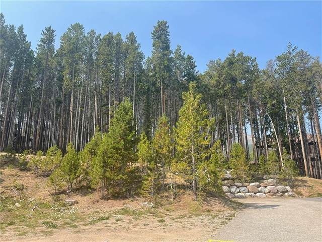 119 Bolder Cir, Breckenridge, CO 80424 (MLS #S1030820) :: Colorado Real Estate Summit County, LLC