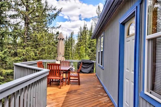 24 Sunbird Court, Como, CO 80432 (MLS #S1030825) :: Colorado Real Estate Summit County, LLC