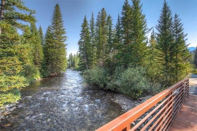 108 Ginger Quill Lane, Breckenridge, CO 80424 (MLS #S1030987) :: Colorado Real Estate Summit County, LLC