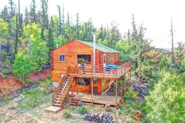 2388 W Longbow Drive, Como, CO 80432 (MLS #S1031019) :: Colorado Real Estate Summit County, LLC