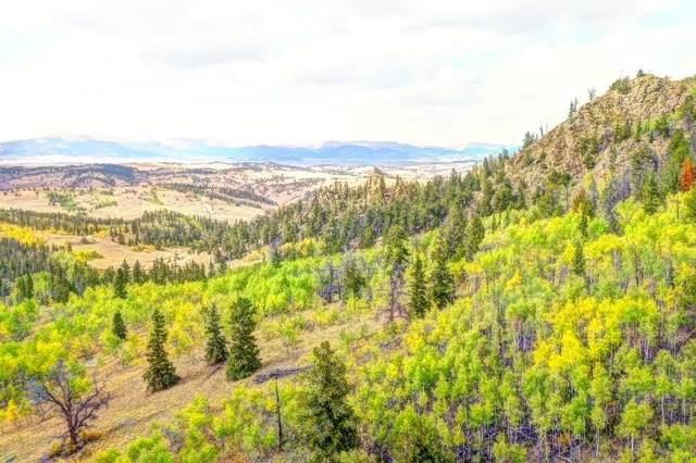 57 Fell Pony Lane, Como, CO 80432 (MLS #S1031093) :: Colorado Real Estate Summit County, LLC