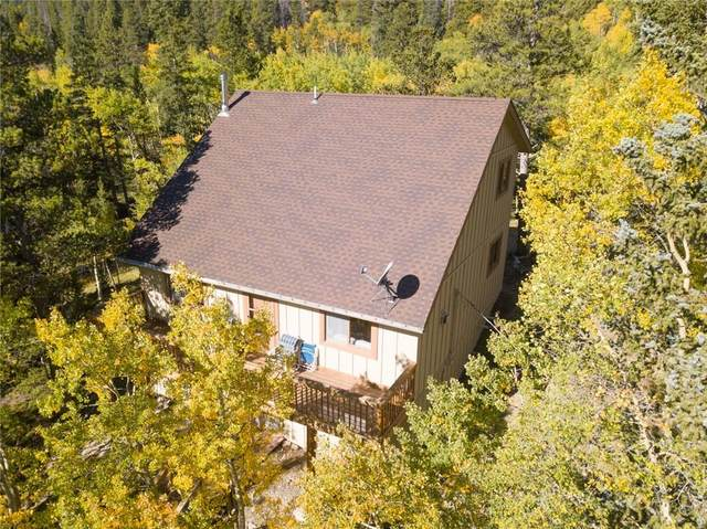 75 Branch Road, Alma, CO 80420 (MLS #S1031107) :: Clare Day with Keller Williams Advantage Realty LLC